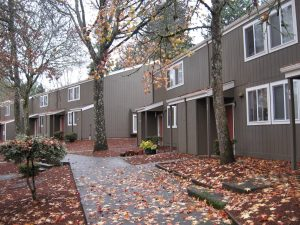 Sunnyslope townhomes in the fall with autumn leaves on the ground